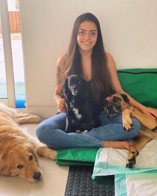estudante salva cão atropelado