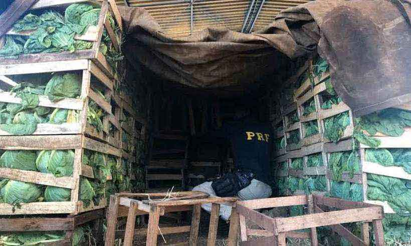 Depois de motorista cometer infração, agentes localizaram mais de três toneladas da erva entre pés de repolho, onde havia também 50 quilos de cocaína (foto: PRF/Divulgação)