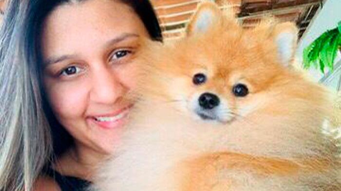 cachorro encontrado Ipatinga