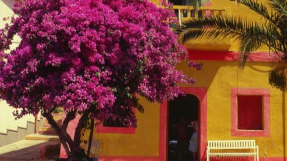 Conheça 5 ilhas paradisíacas que estão livres da Covid-19