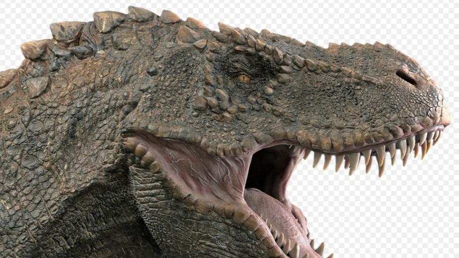 Pesquisadores descobrem dinossauro inédito que viveu em São Paulo
