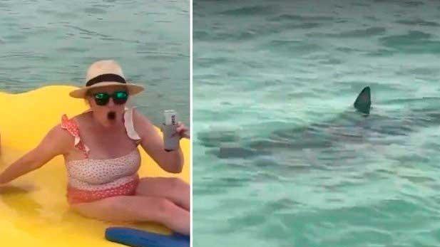 Amigas são cercadas por tubarões na Flórida Foto: Reprodução