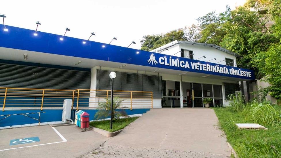 Clínica Veterinária do Unileste abre inscrições para atendimentos de animais de estimação