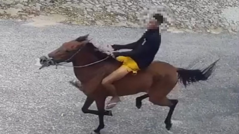 assaltante-cavalo