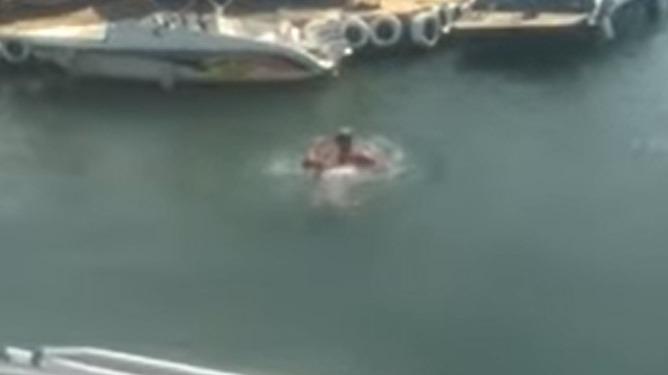 Vídeo mostra homem sendo atacado por capivara enquanto nadava
