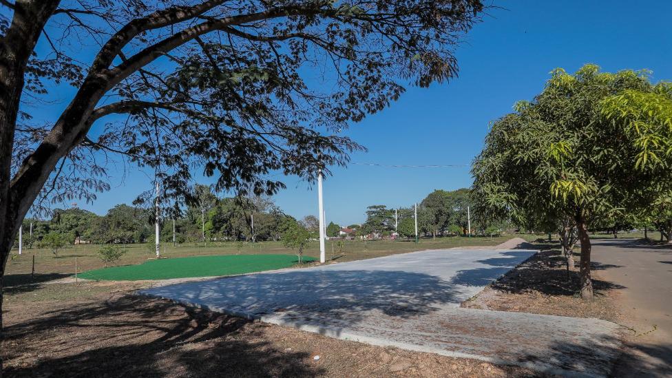 Escolas participam de ato em comemoração ao Dia da Árvore na próxima terça-feira
