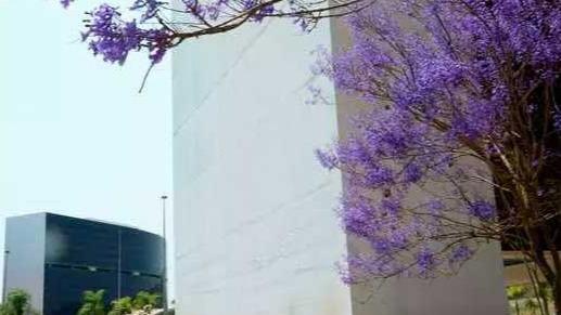 Cidade Administrativa, sede do Governo de Minas Foto Foto: Marco Evangelista/Imprensa MG