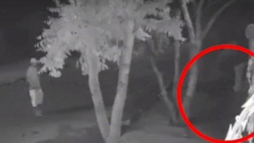 """""""Saci do crime"""": vídeo mostra homem de uma perna só escalando muro para furtar"""