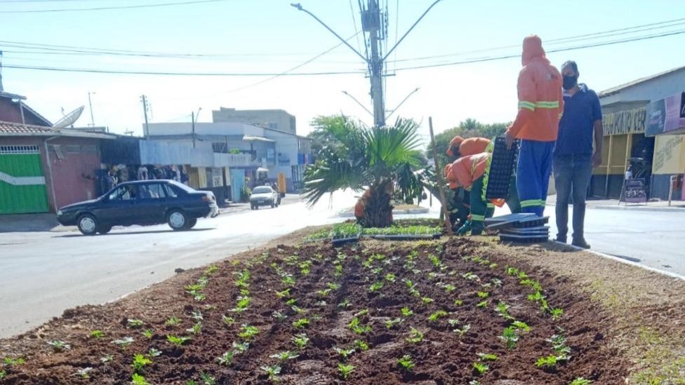 Projeto Flores leva mais cores a praças e canteiros da capital